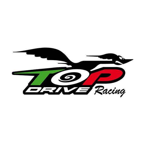 ASD TOPDRIVE logo design